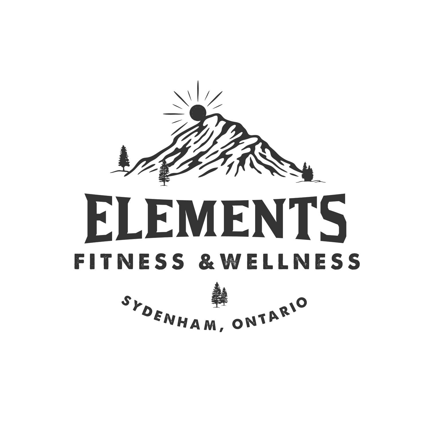 Elements Fitness and Wellness logo